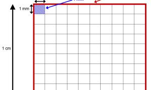 Как посчитать квадратуру комнаты или стены, узнаем квадратные метры