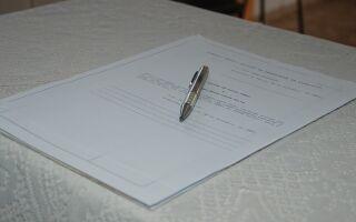 Дарение акций между родственниками физическими лицами, образец договора, особенности