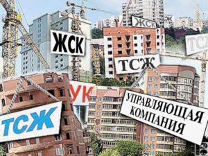 Изображение - Чем отличается тсж от управляющей компании, их преимущества и недостатки, что лучше - тсж или ук vybor-mezhdu-tszh-i-upravlyayushhej-kompaniej-300x225